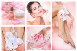 Ladies Delight Packages-I