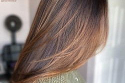 Hair Coloring ( Length Wise )